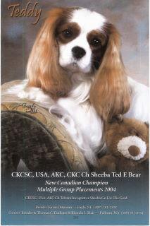 teddysmagcover.jpg